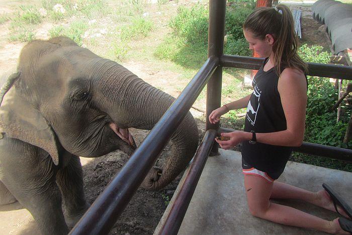 ARCC Student Thailand Trip