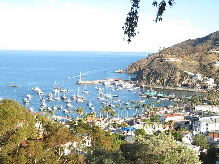 view from above Avalon, Catalina