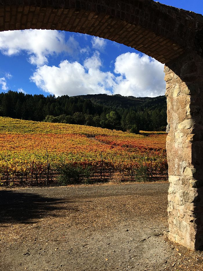 Jack London Park Arch Vineyards