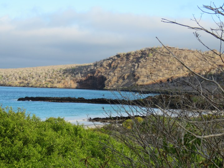 Flour Beach, Galapagos