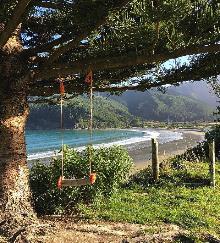 tree swing on beach along Queen Charlotte Drive, New Zealand
