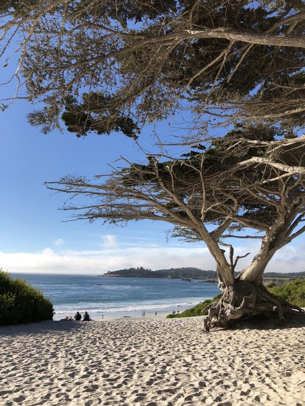 entrance to Carmel Beach