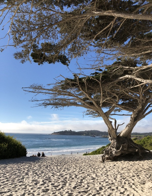 entrance to Carmel Beach