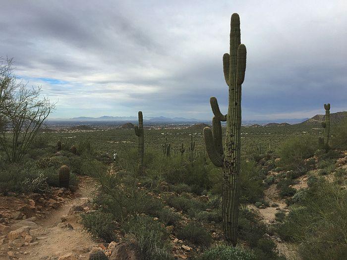 hiking Usery Mountain Regional Park, Arizona