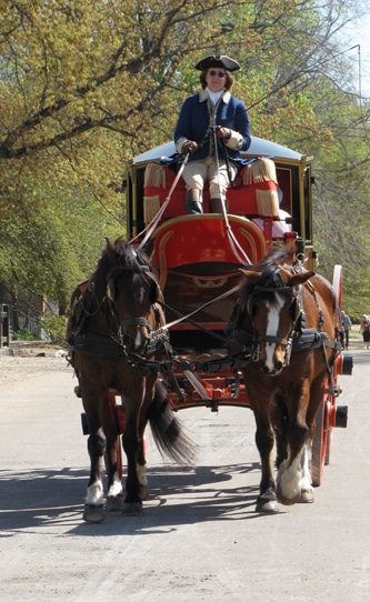 horse-and-buggy-colonial-williamsburg